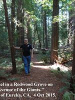 2015 10 03f-Avenue of the Giants