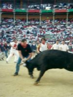 2001-07b-Michael fighting with a bull during the Running of the Bulls in Pamplona, Spain